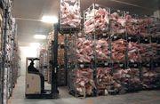 Рабочие на склад Холодильники Морозильные камеры Чехия